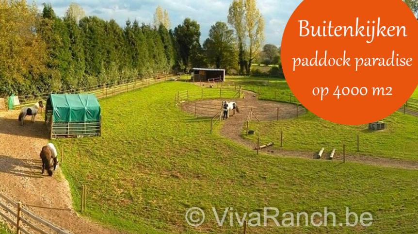 buitenkijken viva ranch